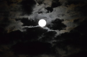 Full Moon on the Homestead